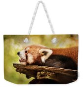 Profile Of A Red Panda Weekender Tote Bag