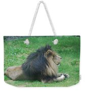Profile Of A Sleeping Lion In Grass Weekender Tote Bag