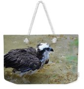 Profile Of An Osprey In Shallow Water Weekender Tote Bag