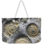 Promicroceras Planicosta, Early Weekender Tote Bag