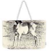 Pronghorn Angelope Weekender Tote Bag