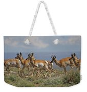 Pronghorn Antelope Running Weekender Tote Bag