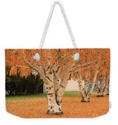 Prosser - Autumn Birch Trees Weekender Tote Bag