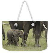 Protecting The Little One Weekender Tote Bag