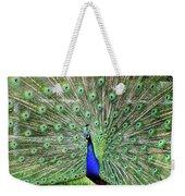 Proud Peacock Weekender Tote Bag