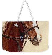 Proud - Portrait Of A Thoroughbred Horse Weekender Tote Bag