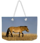 Przewalskis Stallion Weekender Tote Bag