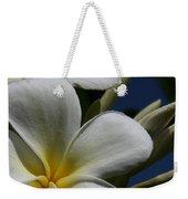 Pua Lena Pua Lei Aloha Tropical Plumeria Maui Hawaii Weekender Tote Bag