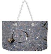 Puddlescape Weekender Tote Bag