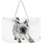 Pudsquiz Belina On The Prowl  Weekender Tote Bag