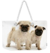 Pugzu And Pug Puppies Weekender Tote Bag