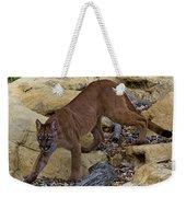 Puma Stalking Weekender Tote Bag