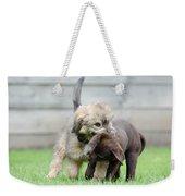 Puppies Playing Weekender Tote Bag