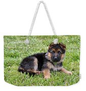 Puppy In The Spring Weekender Tote Bag by Sandy Keeton