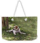 Puppy Love Weekender Tote Bag