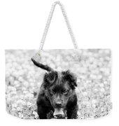 Puppy Play Weekender Tote Bag