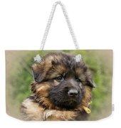 Puppy Portrait II Weekender Tote Bag by Sandy Keeton