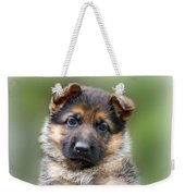 Puppy Portrait Weekender Tote Bag by Sandy Keeton