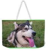 Purebred Alaskan Malamute Tongue Weekender Tote Bag