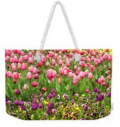 Purple And Pink Tulips In Canberra In Spring Weekender Tote Bag
