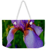 Purple Bearded Iris Portrait Weekender Tote Bag