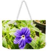 Purple Browallia Flower Weekender Tote Bag