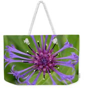 Purple Centaurea Montana Flower Weekender Tote Bag