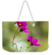Purple Cosmos Flowers Square Weekender Tote Bag