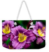 Purple Day Lillies Weekender Tote Bag