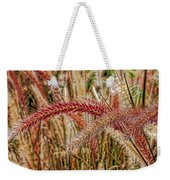 Purple Fountain Grass Abstract By H H Photography Of Florida Weekender Tote Bag