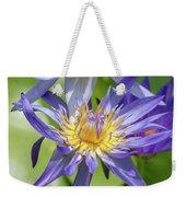 Purple Water Lily Flowers Blooming In Pond Weekender Tote Bag