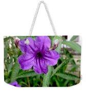 Purple Mexican Petunia Weekender Tote Bag
