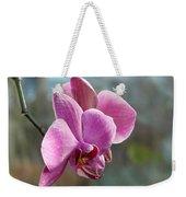 Purple Phalaenopsis Orchid Weekender Tote Bag