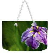 Purple Siberian Iris Flower Closeup Weekender Tote Bag