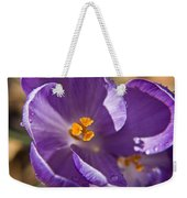 Purple Spring Crocus Weekender Tote Bag