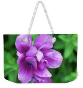 Purple Tulip Blossom With Dew Drops On The Petals Weekender Tote Bag