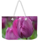 Purple Tulip With Water Drops Weekender Tote Bag