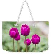 Purple Tulips 1 Weekender Tote Bag