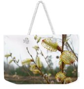 Pussy Willow Blossoms Weekender Tote Bag