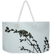 Pussy Willow Catkins Weekender Tote Bag