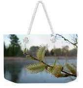 Pussy Willow Flowers Weekender Tote Bag