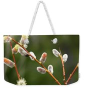 Pussy Willows In Spring Weekender Tote Bag