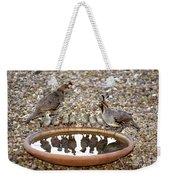 Quail Family Gathering Az Weekender Tote Bag