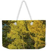 Quakers Weekender Tote Bag