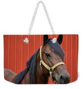 Quarter Horse Weekender Tote Bag by Sandy Keeton