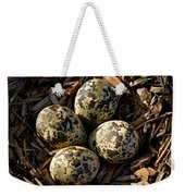 Quartet Of Killdeer Eggs By Jean Noren Weekender Tote Bag
