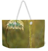 Queen Anne's Lace In Evening Weekender Tote Bag