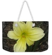 Quenched Weekender Tote Bag