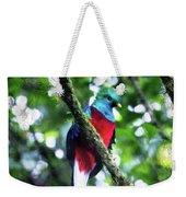 Quetzal In Monteverde Weekender Tote Bag