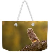 Qui, Moi? Little Owlet In Warm Light Weekender Tote Bag
